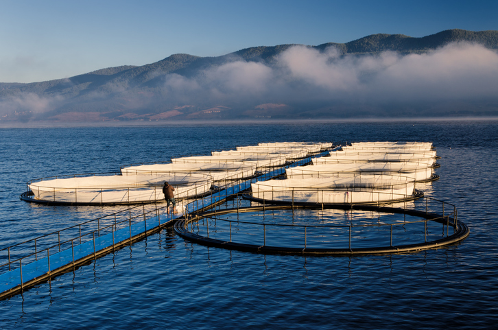 Marine aquaculture zoning and site selection, contribution of GIS-based tools image